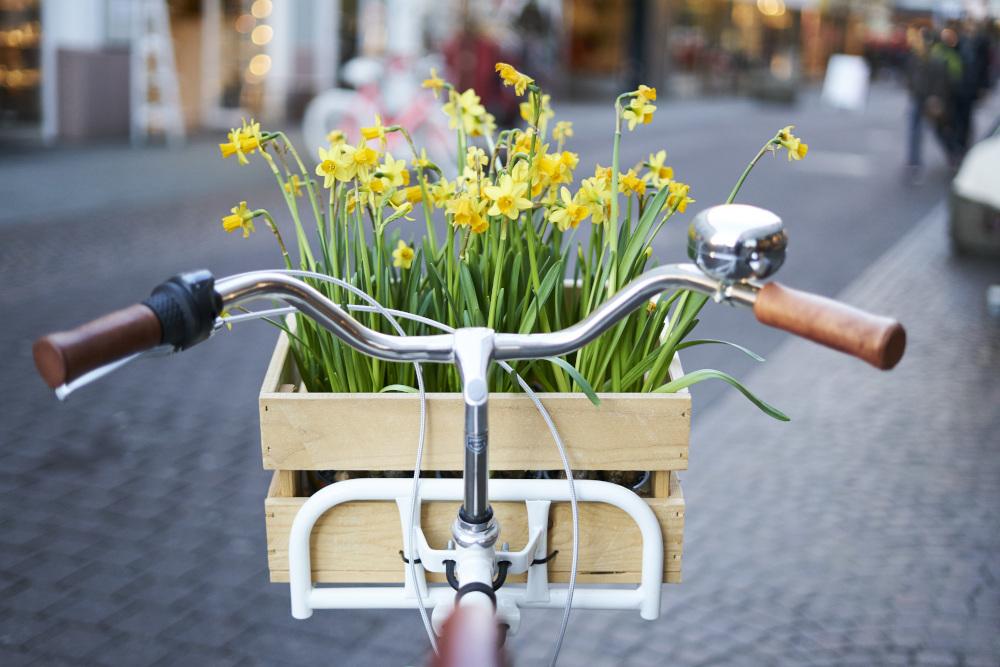 kosz z kwiatami na kierownicy roweru